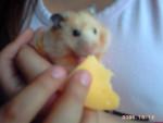 peluchina - (7 mois)